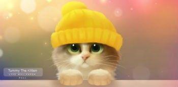 Tummy The Kitten