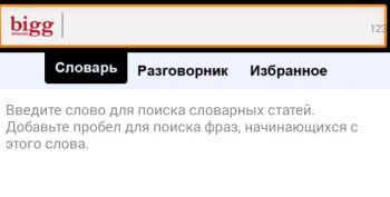 Bigg Англо-Русский Оффлайн Словарь