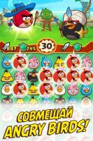 Angry Birds Fight! RPG Puzzle - скриншот